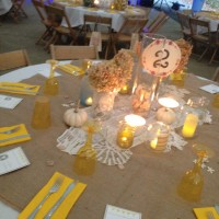 Next Step Event Planning - Wedding Planner / Party Decor in Nashville, Tennessee