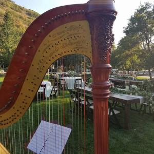 Nicole Kirkham Music - Harpist in Orem, Utah