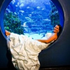 North Carolina Aquarium at Fort Fisher - Venue in Kure Beach, North Carolina