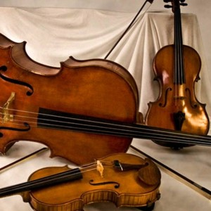 North Texas String Group - String Quartet / Classical Ensemble in Dallas, Texas
