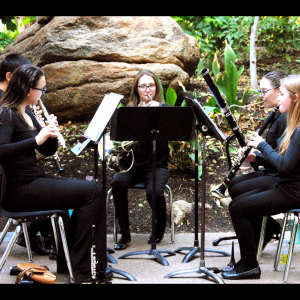 North Winds Woodwind Quintet - Classical Ensemble in Phoenix, Arizona