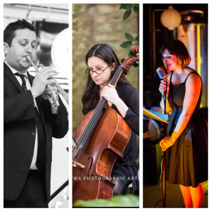 Northside Brass Music Co. - Wedding Band / String Quartet in Geneva, Illinois
