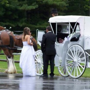 Nostalgic Limo Horse & Carriage Service - Horse Drawn Carriage in Dover Foxcroft, Maine