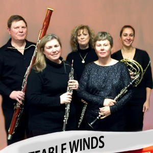 Noteable Winds - Classical Ensemble / Holiday Party Entertainment in Dayton, Ohio