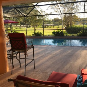 Ocala Oasis - Venue / Party Rentals in Ocala, Florida