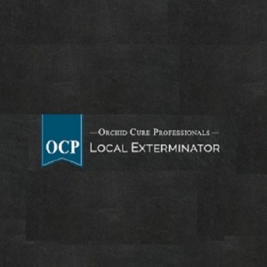 OCP Bed Bug Exterminator Las Vegas NV - Event Planner in Las Vegas, Nevada