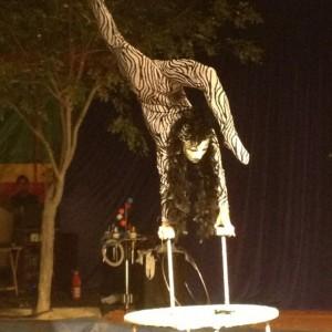 Odgerel Gombo - Circus Entertainment in Las Vegas, Nevada