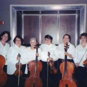 Mitten Florist Strings and Event Planning  - Wedding Band in Hale, Michigan
