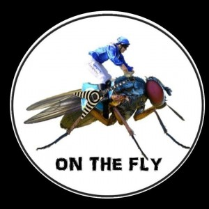 On The Fly - Classic Rock Band in Sacramento, California