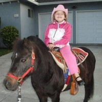 Once Upon a Pony Rides & Petting Zoo - Pony Party / Animal Entertainment in Morgan Hill, California