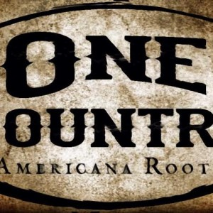 One Country - Country Band / Wedding Musicians in San Jose, California