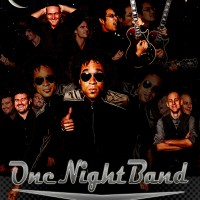 One Night Band - Wedding Band in Chicago, Illinois