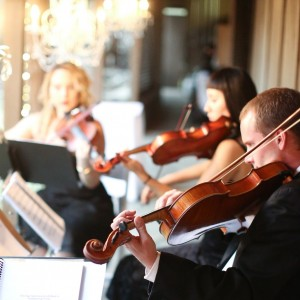 Organic String Quartet - String Quartet / Harpist in Los Angeles, California