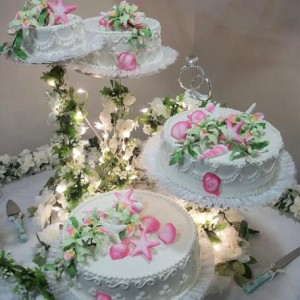 Orlando Cakes - Cake Decorator in Clermont, Florida