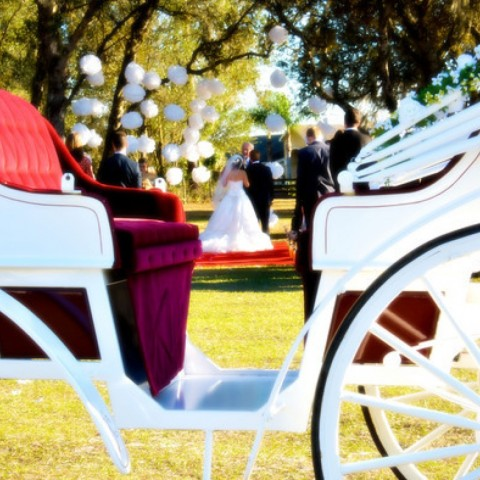Hire Orlando Horse Amp Carriage Horse Drawn Carriage In