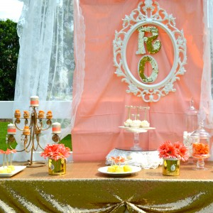 Over The Top Partys - Event Planner / Linens/Chair Covers in Kennesaw, Georgia