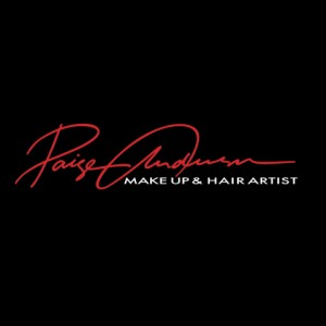 Paige Anderson Professional Makeup & Hair Stylist