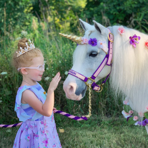 Paige's Pony Parties LLC - Pony Party / Petting Zoo in Riga, Michigan
