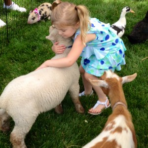 Paramount Pony - Petting Zoo / Outdoor Party Entertainment in Kansas City, Missouri