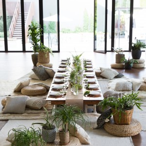 Panacea Collective - Event Furnishings / Party Decor in Austin, Texas