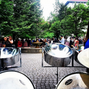 Panwaves Steel Band - Steel Drum Band / Wedding Band in Kitchener, Ontario