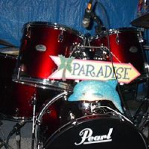 Paradise Band - Wedding Band in Howell, Michigan