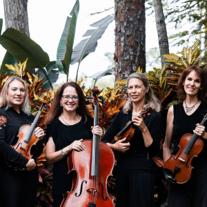Paradise Strings - String Trio in Naples, Florida