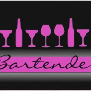 Parlay Mobile Bartending - Bartender / Wedding Services in Port Gibson, Mississippi