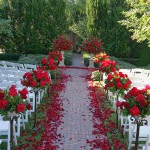 Party Conmigo Events - Event Planner / Caterer in Bay Area, California