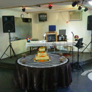 Party Down DJ & Karaoke, LLC - DJ / College Entertainment in Clarksburg, West Virginia