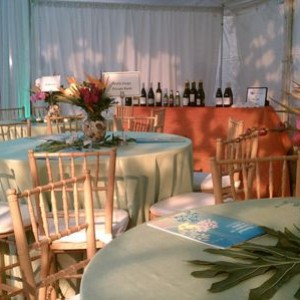 Party Perfect Party Rentals - Party Rentals / Tent Rental Company in Richmond, Virginia