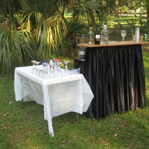 Party Service - Bartender / Wedding Services in Ocala, Florida