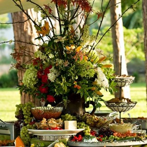 PartyScapes Unlimited - Caterer in Orange County, California