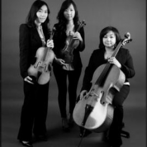 Passione String Trio - String Trio in Reston, Virginia