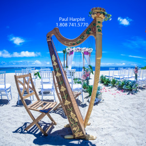 Paul Harpist - Harpist in Honolulu, Hawaii