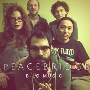 PeaceBridge - Party Band / Dance Band in Buffalo, New York