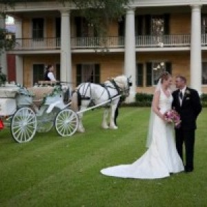 Pegasus Carriage Company - Horse Drawn Carriage / Holiday Party Entertainment in Pearl River, Louisiana