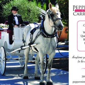 Peppermint Creek Carriage Co. - Horse Drawn Carriage / 1920s Era Entertainment in Modesto, California