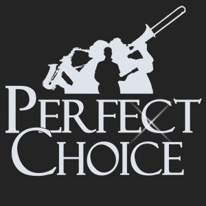 Perfect Choice - Wedding Band / 1990s Era Entertainment in Cleveland, Ohio