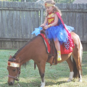 Perfectly Pettable Party Animals & Pony RIdes - Pony Party / Outdoor Party Entertainment in Hattiesburg, Mississippi