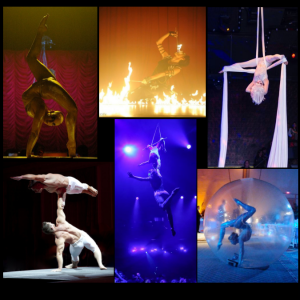 Phoenix Entertainment NYC - Circus Entertainment / Trapeze Artist in New York City, New York