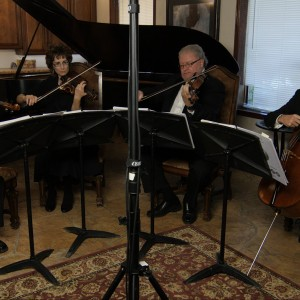Phoenix String Quartet - String Quartet / Wedding Musicians in Phoenix, Arizona