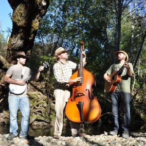 Pick & Pull - Americana Band / Bluegrass Band in Petaluma, California