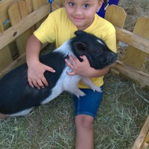 Piglet n Pals,LLC Mobile Petting Zoo - Petting Zoo / Family Entertainment in Apopka, Florida