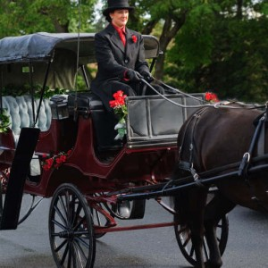 Pinewood Stables Carriage Service