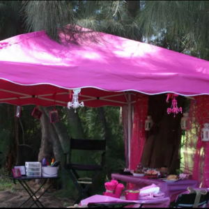 Pink Tiara Events - Princess Party / Face Painter in West Palm Beach, Florida