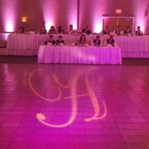 Pitch Perfect Productions - Wedding DJ in Bloomington, Illinois