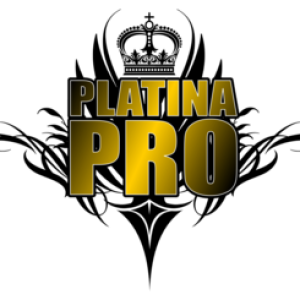 Platina - Pro inc - Sound Technician in Miami, Florida