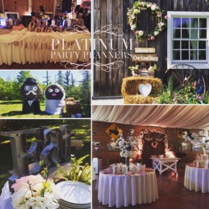 Platinum Party Planners LLC - Wedding Planner / Backdrops & Drapery in Wantagh, New York