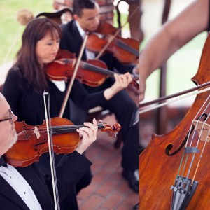 Plays Well With Others - Classical Ensemble / Wedding Musicians in Hemet, California